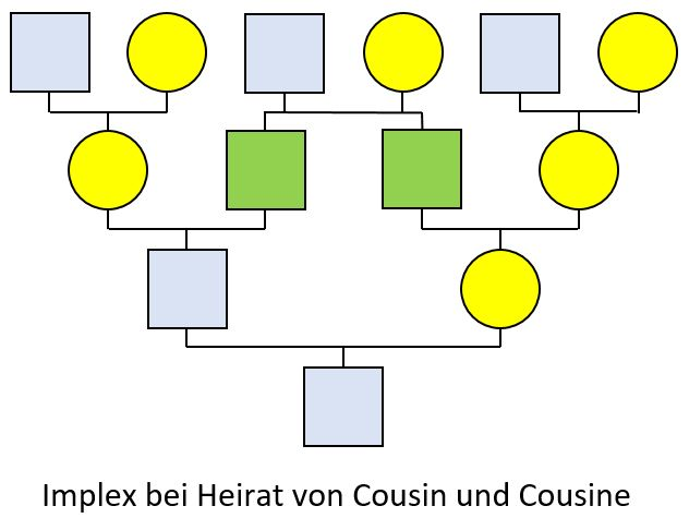 Prinzipschema Cousin heiratet Cousine